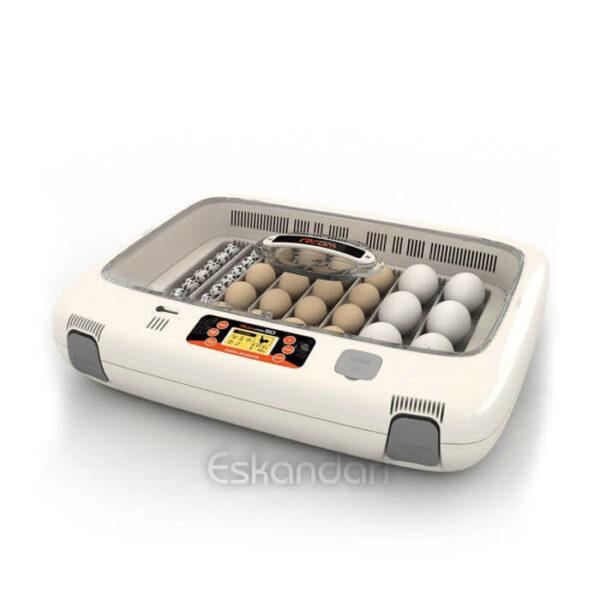 Rcom 50 PRO دستگاه جوجه کشی خارجی