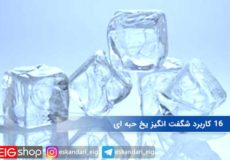 ۱۶ کاربرد شگفت انگیز یخ حبه ای
