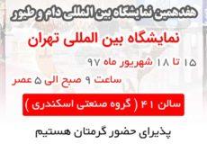 نمایشگاه بین المللی دام و طیور تهران 97نمایشگاه بین المللی دام و طیور تهران 97