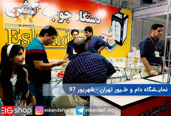 11-نمایشگاه دام و طیور تهران - غرفه گروه صنعتی اسکندری.jpg