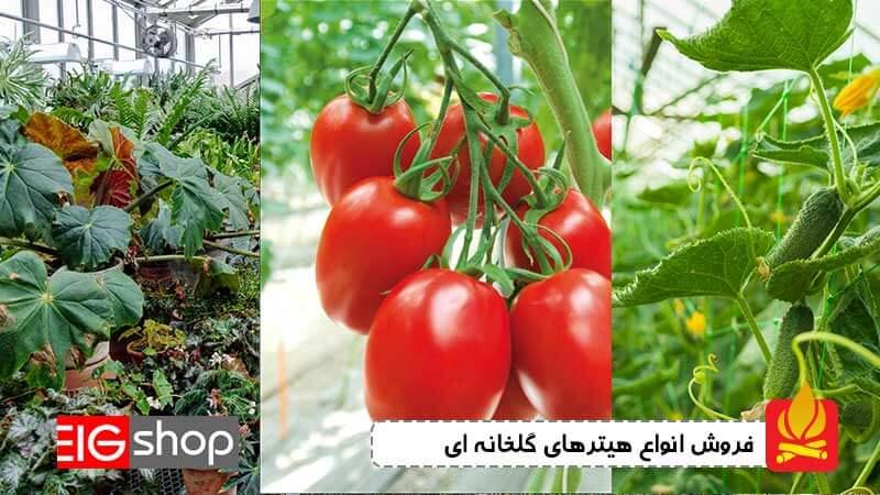هیتر گلخانه - بخاری گلخانه مخصوص سالن صیفی_جات و سرشاخه