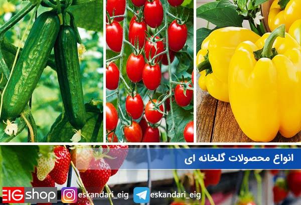 انواع محصولات گلخانه ای