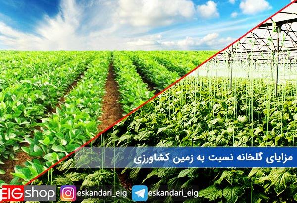 مزایای گلخانه نسبت به زمین کشاورزی