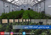 هزینه راه اندازی گلخانه ۱۰۰۰ متری