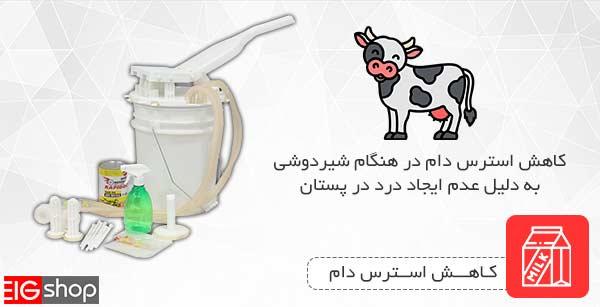 دوشش شیر بدون ایجاد درد در پستان گاو