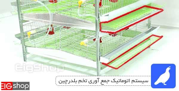 محل ذخیره تخم در قفس بلدرچین تخمگذار