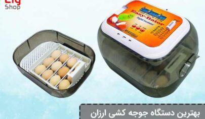 ارزان-ترین-دستگاه-جوجه-کشی-در-ایران
