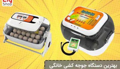 The-best-home-incubator