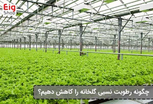 روش کاهش رطوبت نسبی گلخانه