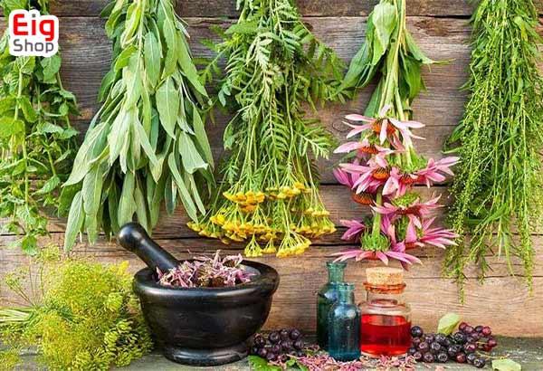 شزایط پرورش گیاهان دارویی - فروشگاه اینترنتی eig-shop