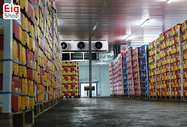 شرایط نگهداری میوه در سردخانه - فروشگاه اینترنتی eig-shop