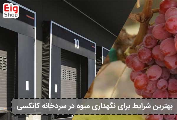 نگهداری میوه در سردخانه کانکسی - فروشگاه اینترنتی eig-shop