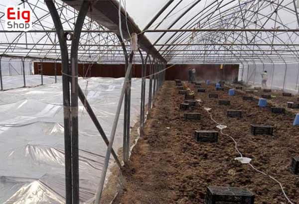 خاک گلخانه گیاهان دارویی-گروه صنعتی eig