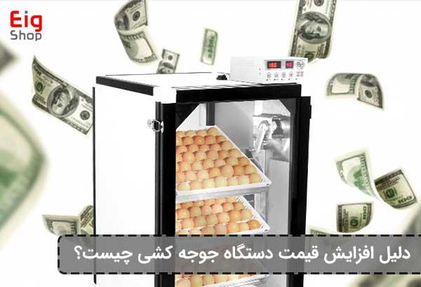 دلیل افزایش قیمت دستگاه جوجه کشی - فروشگاه اینترنتی EIG