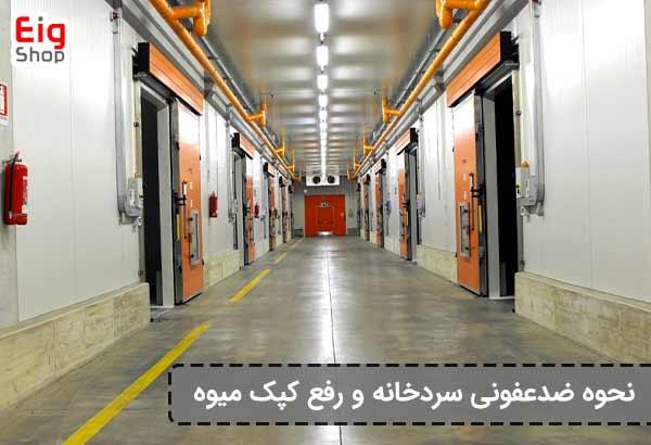 ضدعفونی سردخانه-گروه صنعتی eig