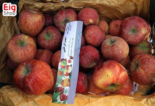 کپک زدن میوه-گروه صنعتی eig