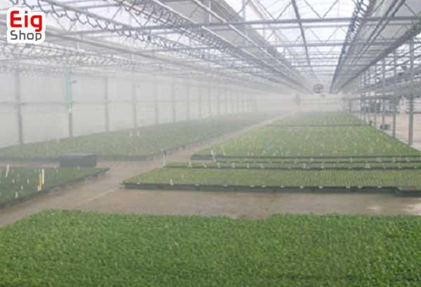 کاهش دمای گلخانه با رطوبت-گروه صنعتی eig
