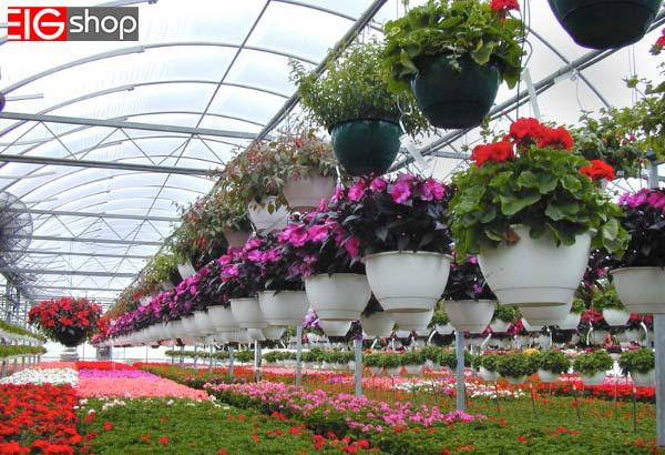 برای ساخت گلخانه گل های زینتی به چه تجهیزاتی نیاز داریم؟ - گروه صنعتی EIG