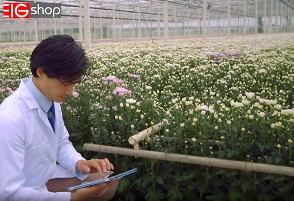 روش دریافت مجوز گلخانه گل و گیاهان زینتی - گروه صنعتی EIG