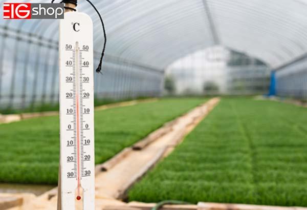 نیازهای دمایی گل های زینتی - گروه صنعتی EIG