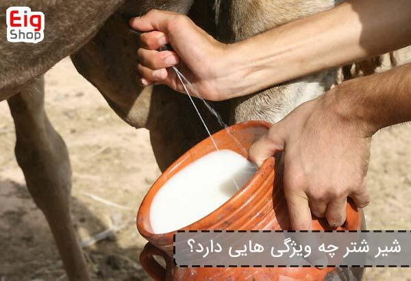 شیر شتر چه ویژگی هایی دارد؟یونیت هیتر چگونه کار می کند؟ - فروشگاه اینترنتی eig shop